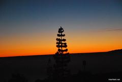Захід Сонця, Тенеріфе, Канари  InterNetri  329