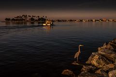 Sunrise at Quivira Point (I_V_Photography) Tags: california sandiego quivira sunrise morning boat heron rocks palms