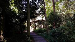 Ház az erdő mélyén (Szarvasi arborétum) (milankalman) Tags: wood dark mysterious pathway