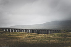 Bridging the dale (The Frustrated Photog (Anthony) ADPphotography) Tags: architecture category england landscape northyorkshire places ribblesdaleviaduct travel yorkshire architecturephotography travelphotography arches bridge viaduct battymossviaduct railway mist rain grass dale unitedkingdom greatbritain canon70d canon canon1585mm outdoor