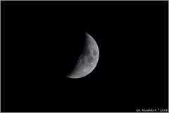 half.moon@18July18.naples.it (Rinaldofr) Tags: canon6dmkii canonef70300isusm moon night half grey