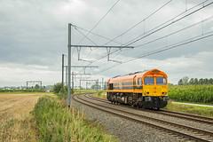 RRF 561-05 Y.Melsele (TreinFoto België) Tags: 56105 gm66 class 66 emd 200385615 rail feeding rrf melsele waaslandhaven bertschi belgië belgique belgien belgium