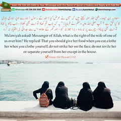 what-is-the-right-of-the-wife-of-one-of-us-over-him (aamirnehal) Tags: quran hadees hadith seerat prophet jesus moses book aamir nehal love peace quotes allah muhammad islam zakat hajj flower gift sin virtue punish punishment teaching brotherhood parents respect equality knowledge verse day judgement muslim majah dawud iman deen about son daughter brother sister hadithabout quranabout islamabout riba toheed namaz roza islamic sayings dua supplications invoke tooba forgive forgiveness mother father pray prayer tableegh jihad recite scholar bukhari tirmadhi