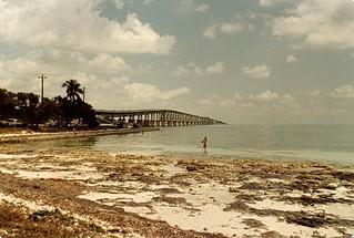 Lowtide At Bahia Honda Bridge
