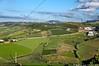 Arredores de Torres Vedras - Portugal 🇵🇹
