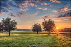 Wauwilermoos (Hanspeter Ryser) Tags: sunset sonnenuntergang ettiswil kottwil sommer abend color licht sonne land landschaft himmel wolken bäume swiss switzerland schweiz hanspeter ryser art kunst fotografie