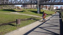 Parque de Invierno (Jusotil_1943) Tags: 221217 puente bridges parque park perros dogs oviedo papelera