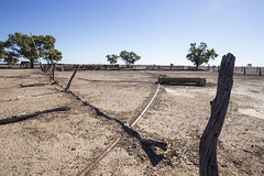 Drought (oz_lightning) Tags: australia canon6d canonef1635mmf4lis dunlopstation nsw westerndivision agriculture decay outback rural louth newsouthwales aus
