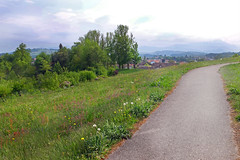 A walk - (rotraud_71) Tags: spring landscape bavaria traunstein way meadow trees sky clouds