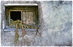Scruffy Facade  09 (Michael J. Woerner) Tags: detail old crumbling farmhouse facade broken rotted ruin rotten