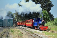 28th June 2018. LBNGR (Dangerous44) Tags: leighton buzzard railway steam narrow gauge 1641 doll 11 pcallen