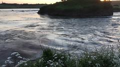 IMG_6981 (Julian W.) Tags: seaside reversingfalls current bridge
