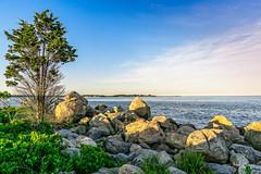 Meigs Point Shore Vista (Alan Charles) Tags: ct connecticutshore hammonassetbeachstatepark hammonassetstateparkmeigspoint meigspoint seascape beach ocean rockyshoreshore sea shore