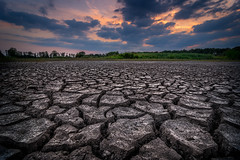 Parched earth (Shots in the dark) Tags: dry parched landscape netherlands sunset soil earth weather clouds sky abstract lines ground