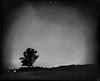 8x10 Startrail (Attila Pasek) Tags: 14inchf63 8x10 commercial ektar fomapan kodak retropan320 vds vdscameramanufactory bw blackandwhite field film largeformat longexposure longexposuretime night sky startrail tree