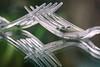 Plastic Fork (blancobello) Tags: macromondays gabel fork plastic spiegelung macro transparent