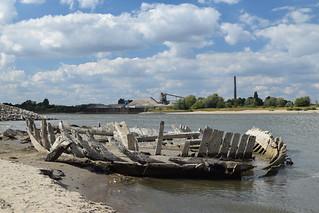 Schiffswrack im Rhein - shipwreck in the river Rhine