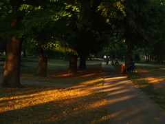 Park v Seredi (Lubo Holicka) Tags: omdm5 tokinafd28mmf28