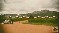 Lovers at Ysios vineyard (El Saskuas) Tags: hdr saskuasfotografia nikon lovers d7100 larioja spain laguardia ysios elciego