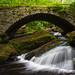 Gleason Falls Stone Arch Bridge