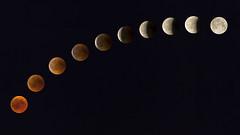 Mondfinsternis 27.07.2018 (david_drei) Tags: mofi2018 mond mondlicht blutmond lunar eclipse lunareclipse mondfinsternis super moon