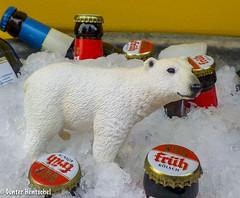 Bei diesen heißen Tagen, soll man viel kaltes (Bier) trinken! (Günter Hentschel) Tags: eiskalt bier kölsch früh frühkölsch meinkölsch trinken durst coolpix nikoncoolpix nikon deutschland germany germania alemania allemagne europa nrw hentschel flickr 2018 juli2018 juli 7