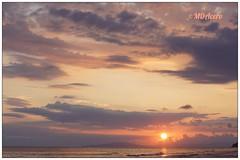 Planeta Tierra (mariadoloresacero) Tags: toscana italie italy italia sunset couche de soleil anochecer crepúsculo sole mare piaggia mer sea beach mar plage