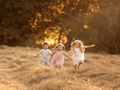 Brother and Sisters (agirygula) Tags: family familyshooting fun kids kidsphotography playing childhood happy running lovely jump summertime sunshine wild wildandfree free loud laughing childphotography field