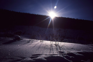Sun is rising above pines in Tatras