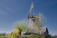 Leisdschendam / 1 des 3 moulins (BelgiumOnePoint) Tags: hollande netherlands moulins mills molens delft porcelaine eau d850 nikon c1