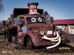 Junkyard Art (makleen) Tags: usroute20 bloomfield ontariocounty newyork art rust rusty vintage old antique worn neglected truck dumptruck towmater internationalharvester roadside
