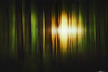 Days of the New (Matt Anderson Photography) Tags: forest motion wisconsin walsh lake sunlight camera movement alien soul trinity anamorphic cinema photograpy landscape nature