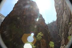 IMG_3699 (Egypt Aimeé) Tags: narrows zion national park canyons pueblos utah arizona