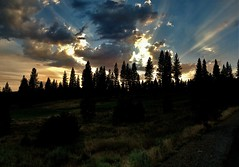 Sunrise of a Magnificent Day (The VIKINGS are Coming!) Tags: sunrise sky clouds sierras california baita cabin vacation pines forest silhouette