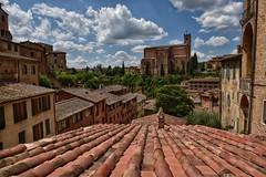 Sienna (Mr_Pudd) Tags: cloud clouds nikond750 nikon roof tile church italy tuscany sienna martintidbury