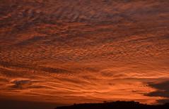Ouro líquido (Márcia Valle) Tags: sunset pordosol céu clouds juizdefora minasgerais brasil brazil márciavalle nikon light luz sunnyday textures texturas