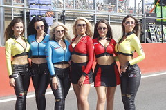 _MG_0317 (yahweh70) Tags: motorsport motorracing motorbikes motorcycles britishsuperbikes superbikes brandshatch promogirl promo promogal