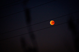 -The Blood Moons Trail -