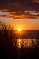 Pacific Sunset (LBofcourse) Tags: manzanitaoregon