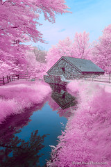 Cotton Candy Brook (Brian M Hale) Tags: sudbury wayside inn grist mill old water river stream brook reflection cotton candy cottoncandy ir infrared infra red 590nm 590 ma mass massachusetts newengland new england usa outside outdoors nature brian hale brianhalephoto architecture trees grass sky clouds pink blue