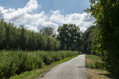 Lines (Nederland in foto's) Tags: nederland netherlands nederlandinfotos nikon pdvandevelde padagudaloma paulvandevelde natuurfotografie nature naturephotographer landscape landschapsfotografie landschap