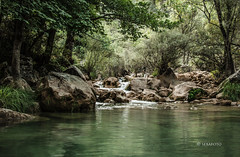 Valle del Guadalquivir. (seb@foto) Tags: bosque agua water guadalquivir roca rocas árbol árboles paisaje río madera verde green cazorla campo nature andalucía jaén 70d naturaleza parquenatural sierradecazorla river