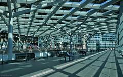 Den Haag: Central Station (Henk Binnendijk) Tags: denhaag thehague netherlands nederland dutch holland station trainstation ns dehaagcentraal kopstation railroadstation treinstation terminal architecture architectuur randstadrail denhaagcs