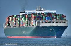 Ever Goods (Bernhard Fuchs) Tags: boat cargo cargoships cuxhaven containerschiff containerschiffe elbe evergreen frachtschiff frachtschiffe nikon schiffe ship ships vessel water schiff boot wasser