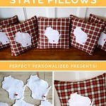 Graduation Gifts : Create your own state specific pillow. Tutorial and free pattern included. Perfe… thumbnail