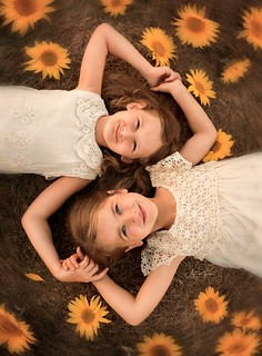 A World without Friendship is a World without Sun