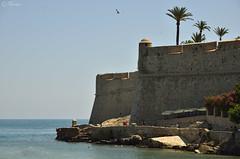 Fortaleza Marina (Txemari Roncero) Tags: fortaleza fortress peñiscola españa castellon spain castillo mar playa verano viajes sea beach summer nikon nikond7000 nikkor1685 txemarironcero