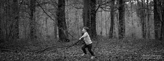 Marty en forêt (DavidLabasque) Tags: garçon boy enfant child kid little lil court run forêt forest wood noiretblanc noir blanc blackandwhite black white nb bw monochrome canon eos 6d 50mm french france