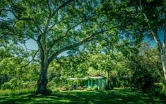 2129 Darkwood Road, Bellingen NSW