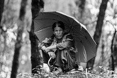 Woman with an Umbrella (PB1_1272) (Param-Roving-Photog) Tags: lady woman local villager squat rural umbrella rain woods forest nature herder cattle bir himachal india himalayas portrait streetphotographer candidphotography streetshot travel wander monochrome blackandwhite bw nikond750 nikkor70200